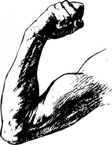 black and white drawing of a muscular arm flexing protein nutrients from plants