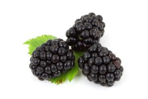 three black berries on white background green leaves nutrients from plants fiber