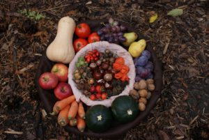 platter of autumn fall vegetables and fruits