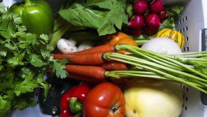 vegetables carrots tomatoes peppers honeydew radishes vegan grocery list